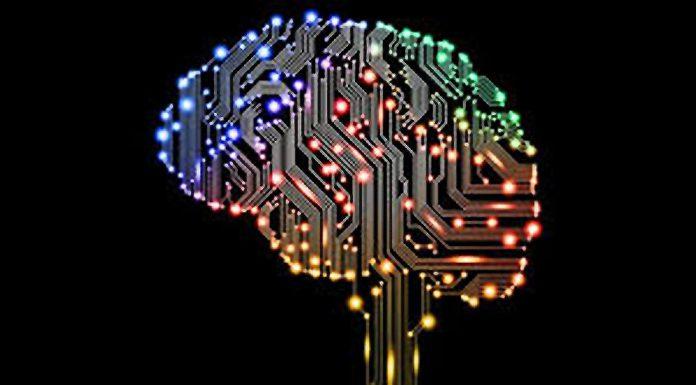 Fiducia tra Aziende e AI
