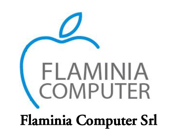 FLAMINIA COMPUTER