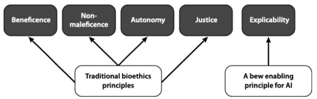 Figura 1 – I principi che sottintendono il termine etica per le I.A