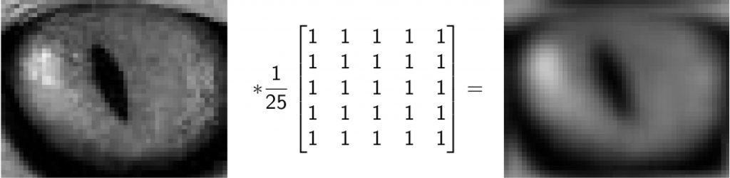 Figura 10 Filtro convoluzionale su immagine [CAFOS]